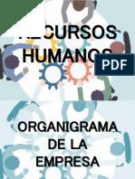 Recursos humanos - Organigrama empresarial