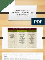 Características Morfológicas de Los Leucocitos