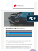 What is VEF (Vessel Experience Factor)