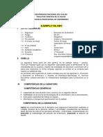 SILABOS MODELO ENFERMERÍA.docx