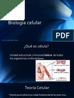 Biología Celular- CLASE 2