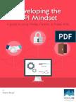 developingtheapimindset.pdf
