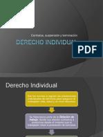 9 Derecho Individual