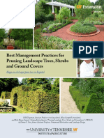 Best Management Practices for Pruning Landscape Trees, Shrubs and Ground Covers