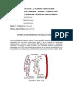 Sisitema de Endomembranas