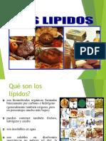 lipidos-130716235238-phpapp02
