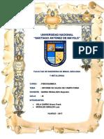 356803581-Informe-Salida-de-Campo.docx
