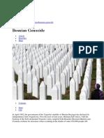 Bosnian Genocide (1)