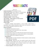 10_proiect_matematica