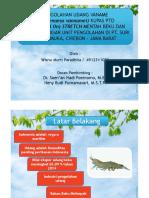 WMP- Presentasi FIX - Bismillah
