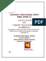 pnb Summer Internship Report 2010 at Pnb Knl, By Manoj Singla