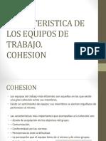 Caracteristica de Los Equipos de Trabajo.cohesion