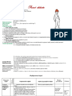 Proiect Didactic CLR