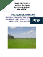 PROYECTO DE INVERSION FUNDO EL SOCORREÑO  02-08-2016.pdf
