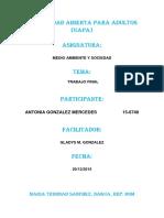 319483113-Trabajo-Final-Medio-Ambiente-Antonia-Gonzalez-Mercedes.docx