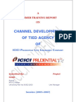 ICICI Channel Development