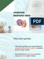 157642463-Curs-2-Notiuni-de-Anat1omie-Bazin-Obstetrica.ppt