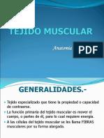 Clase - Tejido Muscular