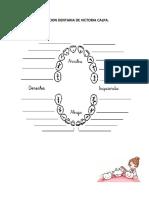 Cronologia Dentaria Victoria