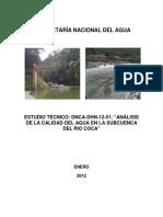 InformeCocaFinal1