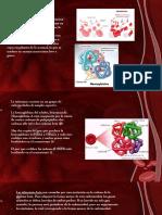 Charla de Hematologia Hemoglobinopatia