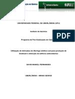 Dissertação Prof David Maikel
