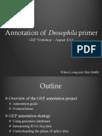Annotation of Drosophila primer