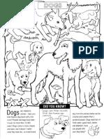 All Animal Coloring Book.pdf