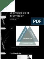 Seguridad de La Información VPDF Clear