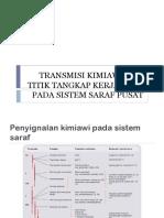 10. titik tangkap obat pada SSP.pptx