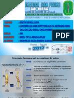 hormonas que controlan el calcio.pptx