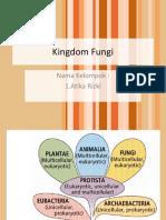 Mikrovir Fungi