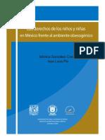 Libro Los Derechos d Lxs Nirixs n Mexico Frnt Al Ambient Obesogenico
