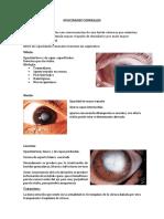Opacidad corneal & Trastornos degenerativos corneales