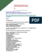 Diccionario de Competencias Direc. (2)