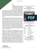 Ankylosaurus.pdf