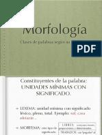 Morfología-