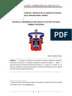 Cadena de Custodia Cubana