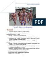Anat 07. Cardiovascular_tema