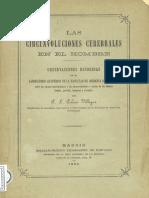 circunvoluciones.pdf