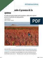 Quinua Su Genoma