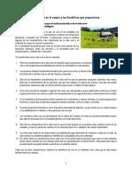 Características de La Vida en El Campo y Los Beneficios Que Proporciona