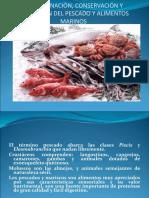 Pescados y Productos Marinos