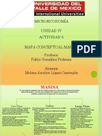 Mapa Conceptual MASISA
