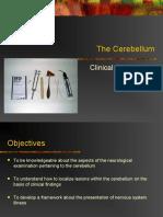 ClinExamCblm com