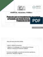 Protocolo Para La Estandarización Del Cuidado Al Paciente R (1) (1)