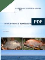 REPRODUCCION DE TILAP I.pptx