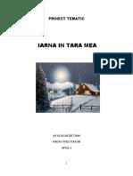 Proiect Tematic Iarna Final
