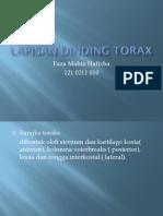 Lapisan Dinding Torax