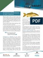 CPFS6.pdf